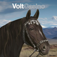 Review from VoltCasino